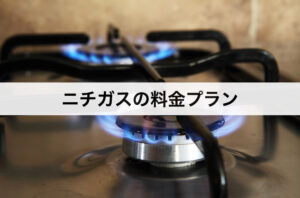 ニチガスの料金プラン|東京ガス・東京電力に比べて安いの?