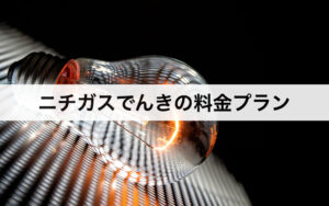 ニチガスでんきの料金プラン|東京電力・中部電力と比較