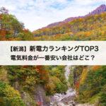 【新潟】新電力会社おすすめランキングTOP3|電気料金が一番安い会社はどこ?
