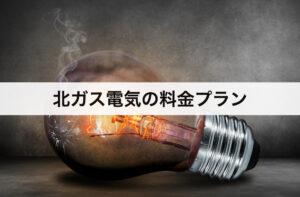 【北海道ガス】北ガスの電気の料金プラン|北海道電力に比べて安いの?