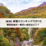【新潟県】新電力会社おすすめランキングTOP10|東北電力と比較してお得な電力会社はどこ?
