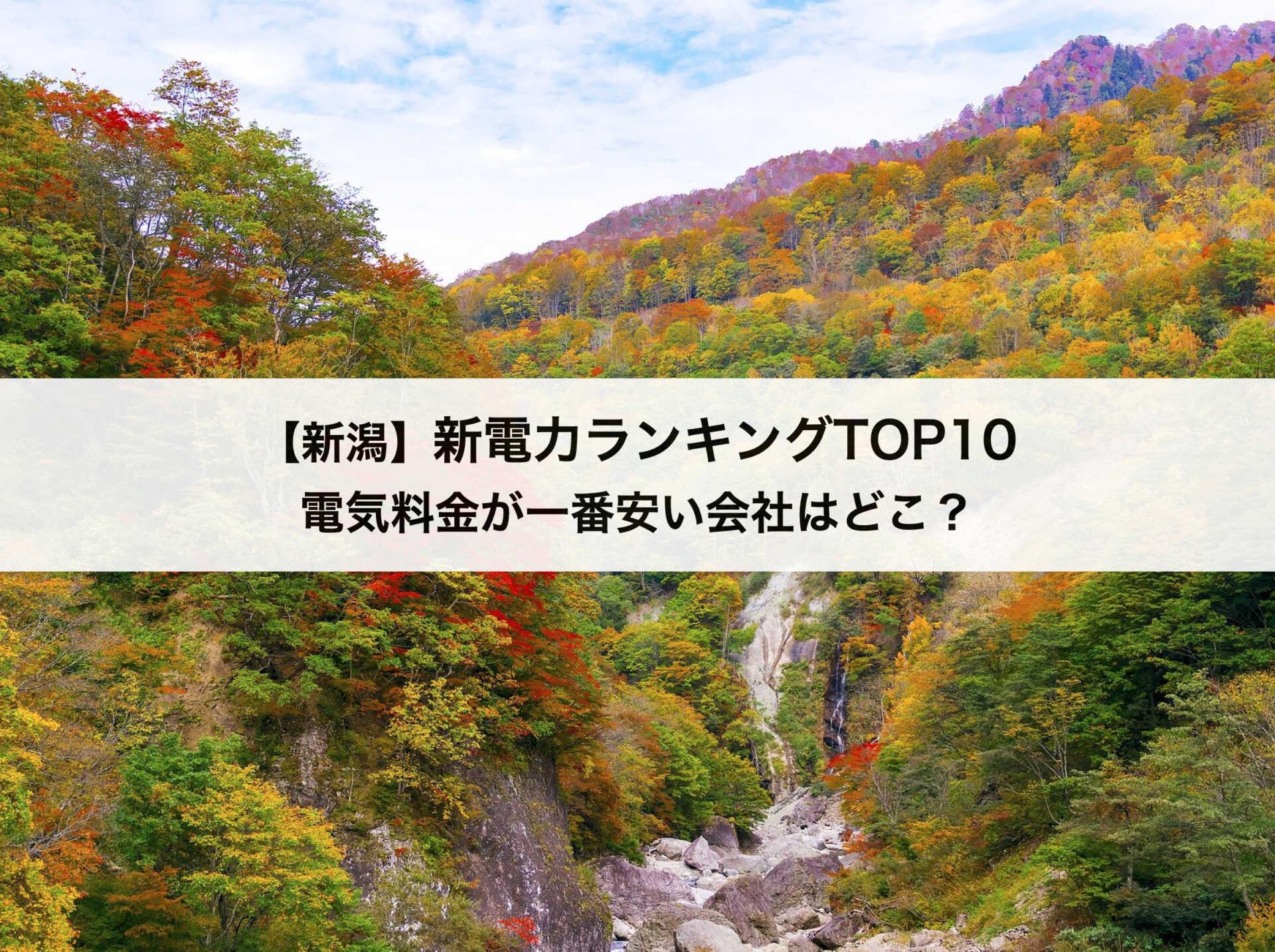 【新潟県】新電力会社おすすめランキングTOP10 東北電力と比較してお得な電力会社はどこ?