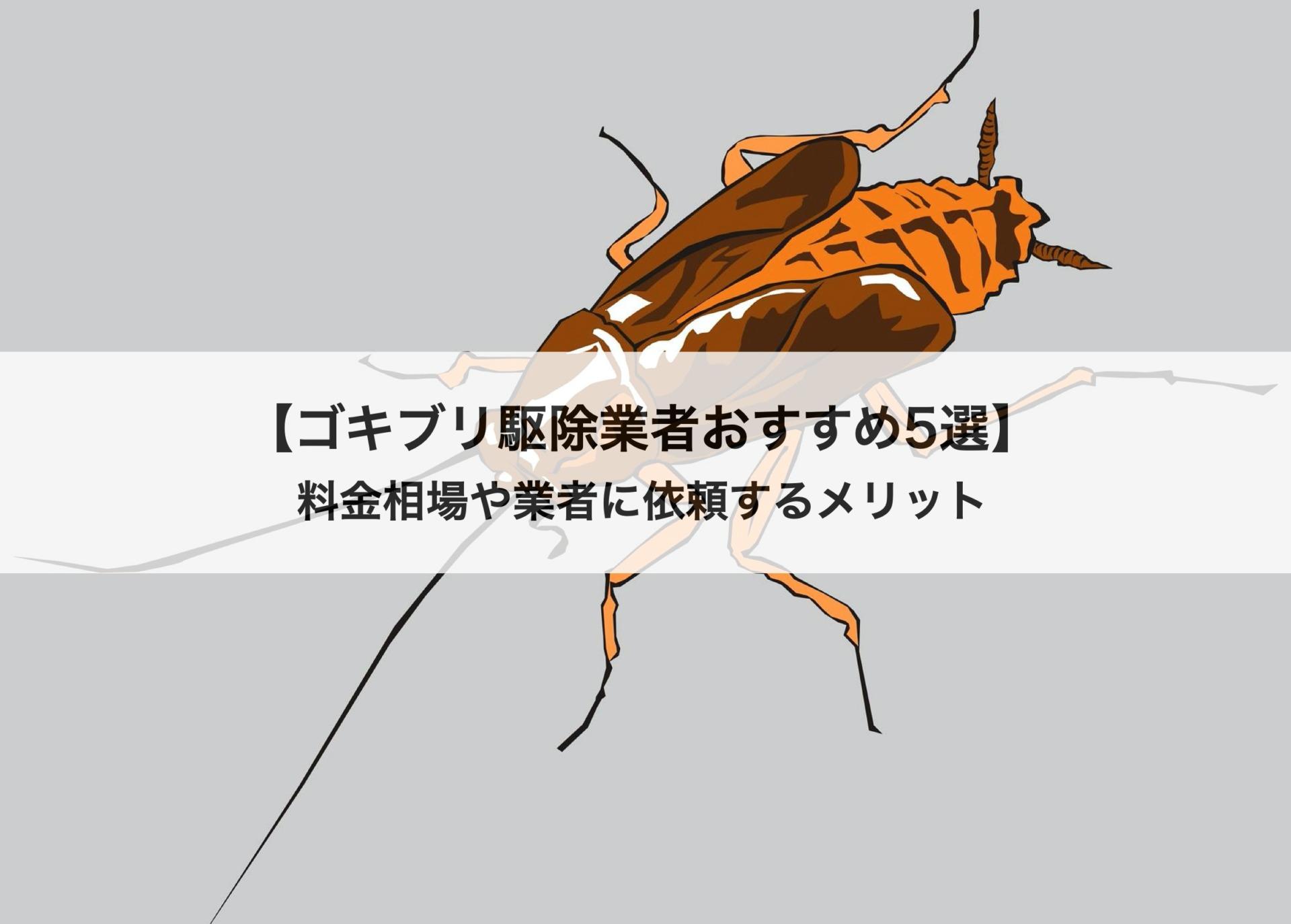 ゴキブリ駆除業者おすすめ5選!料金相場や駆除業者に依頼するメリット、選び方も紹介します。