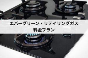 エバーグリーン・リテイリングのガスの料金プラン|東京ガスに比べて安いの?