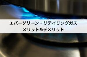エバーグリーン・リテイリング(旧:イーレックス)ガスのメリット・デメリットとは?料金プランから分析!