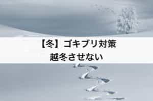 【冬】ゴキブリ対策 越冬させない