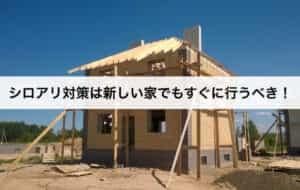 シロアリ対策は新しい家でもすぐに行うべき!