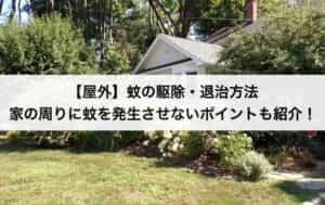【屋外】蚊の駆除・退治方法|家の周りに蚊を発生させないポイントも紹介!