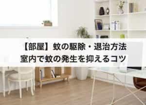 【部屋】蚊の駆除・退治方法|室内で蚊の発生を抑えるコツとは?