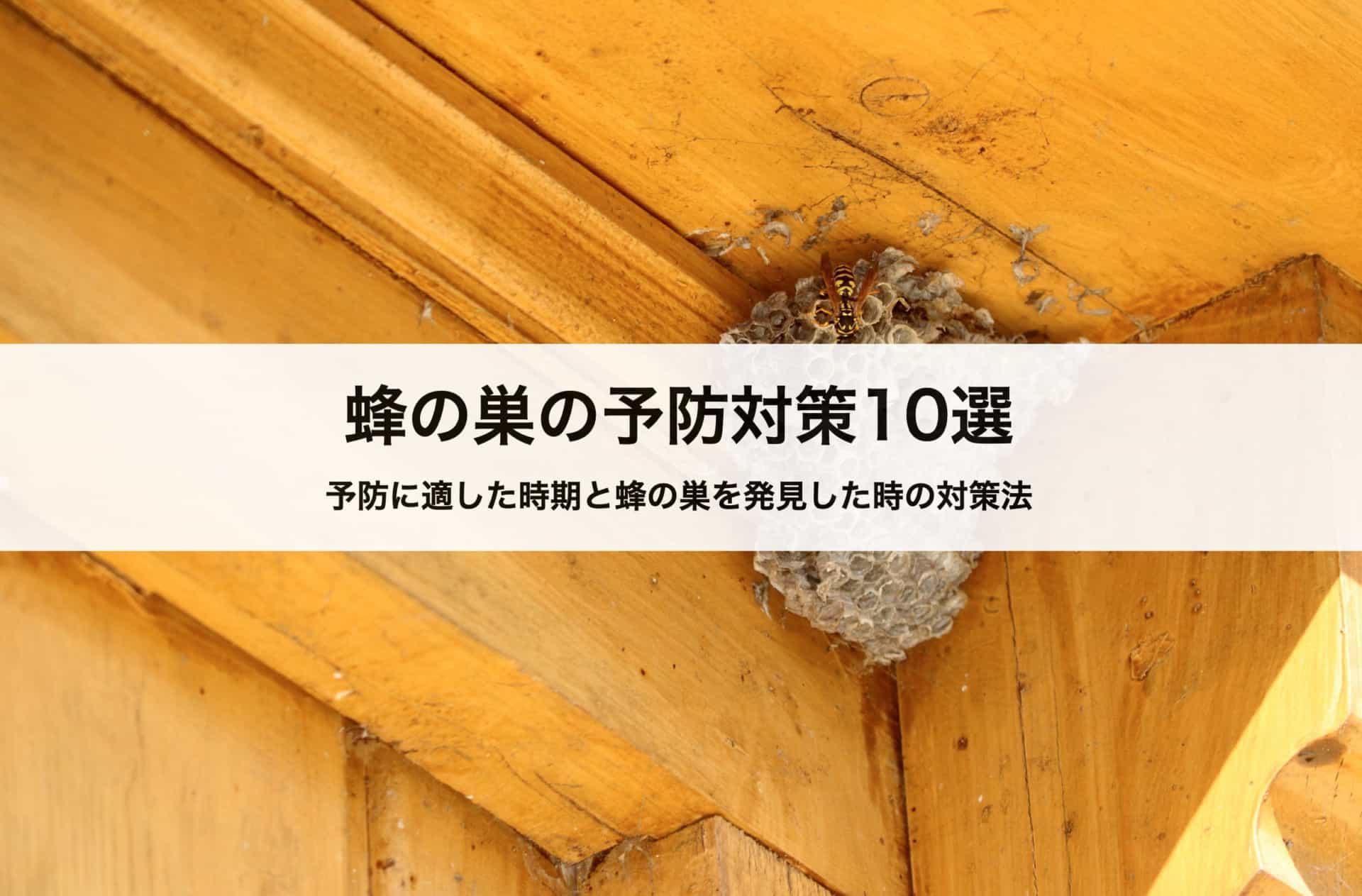 蜂の巣の予防対策10選|予防に適した時期と蜂の巣を発見した時の対策法も紹介します!