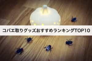 コバエ取りグッズおすすめランキングTOP10 コバエ駆除に最適な商品を大公開!