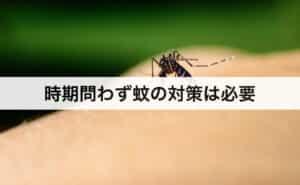 時期問わず蚊の対策は必要!
