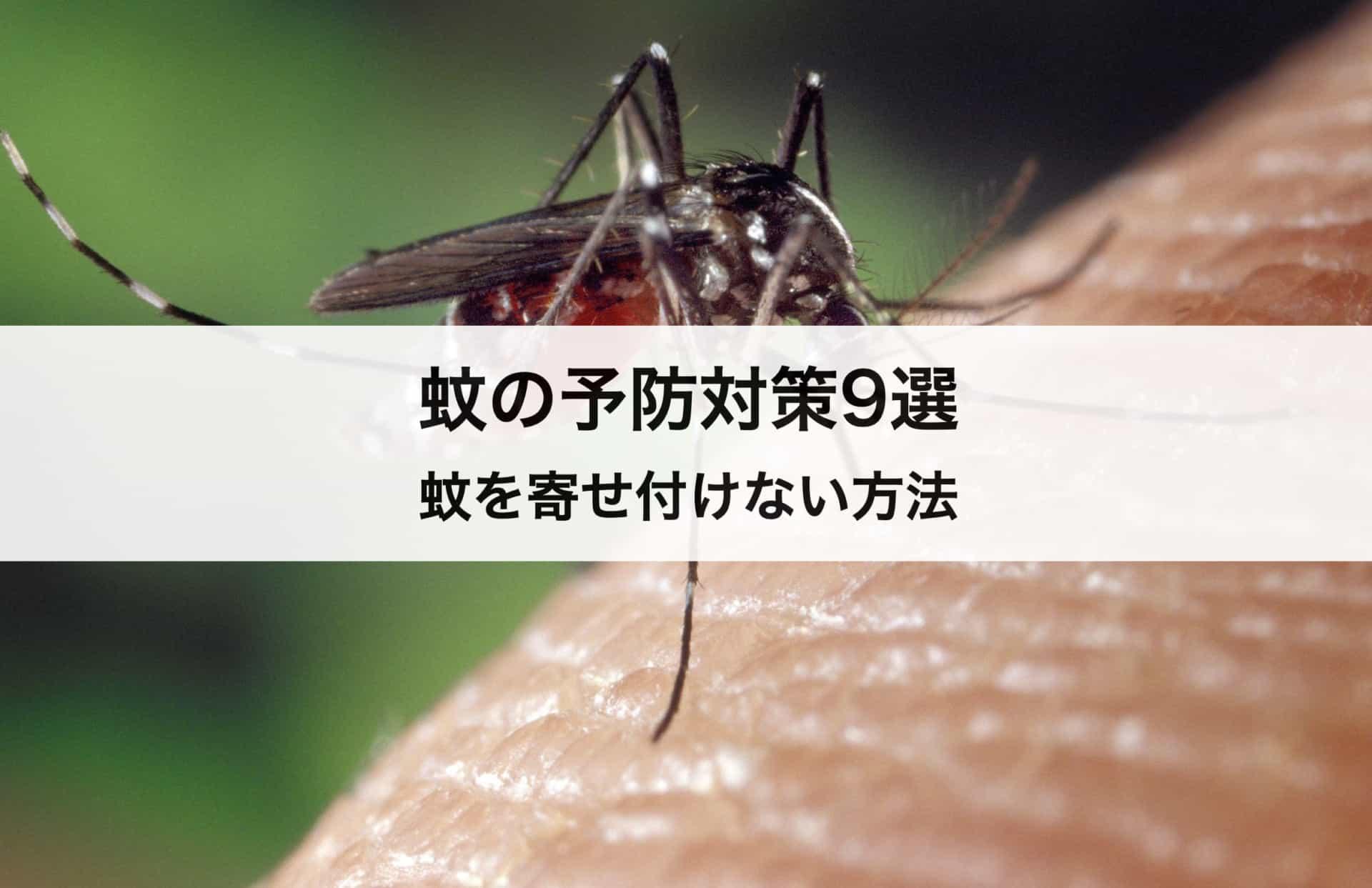 蚊の予防対策9選 蚊を寄せ付けない方法も徹底解説!