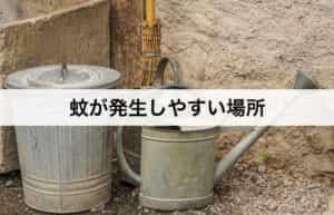 蚊が発生しやすい場所 予防対策に適した場所