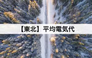 【東北】平均電気代|一人暮らしからファミリー層