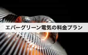 エバーグリーン電気(旧:イーレックス)の料金プラン|東京電力に比べて安いの?