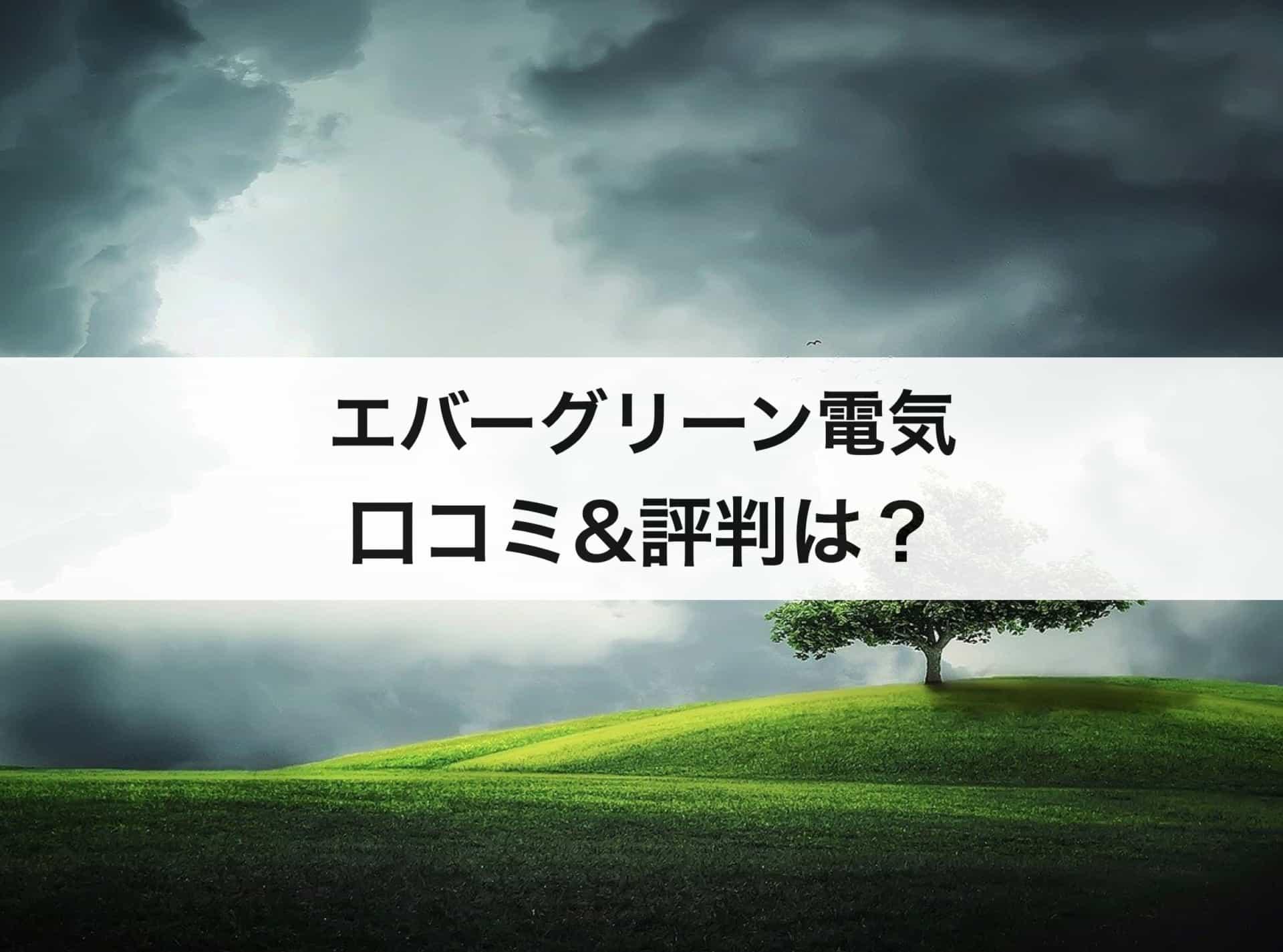 エバーグリーン電気(旧:イーレックス)の口コミや評判は?メリット&デメリット紹介!