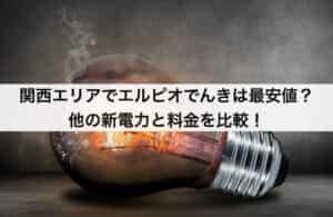 関西エリアでエルピオでんきは最安値?他の新電力と料金を比較!