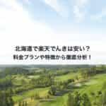 北海道で楽天でんきは安い?料金プランや特徴から徹底分析!